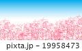 19958473