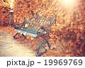 こしかけ ベンチ 縁台の写真 19969769