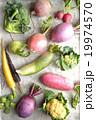 根菜 カラフル 野菜の写真 19974570
