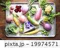 根菜 カラフル 野菜の写真 19974571