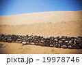 Sands dunes in the desert 19978746