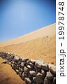 Sands dunes in the desert 19978748