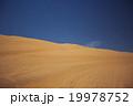 Sands dunes in the desert 19978752