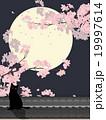 夜桜 19997614