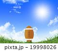 ラグビーボール 青空 陽射しのイラスト 19998026