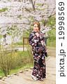 女性 着物 桜の写真 19998569