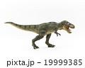 萌えティラノサウルス: wiggly-eyed T-Rex 19999385