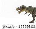 萌えティラノサウルス: wiggly-eyed T-Rex 19999388
