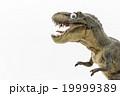 萌えティラノサウルス: wiggly-eyed T-Rex 19999389