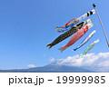 大空を気持ちよく泳ぐ鯉のぼり そして富士山 19999985