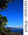 さった峠から観た富士山 20001363