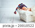 新生児 ベビー 赤ちゃんの写真 20010522