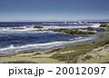 ビーチ 浜辺 波の写真 20012097
