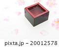 枡酒と桜の花びら 20012578