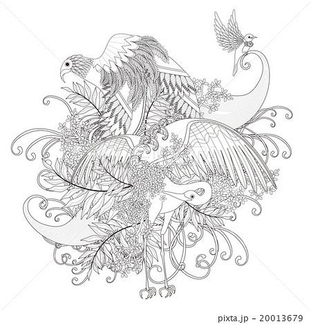 鳥 ぬりえ 細密のイラスト素材 20013679 Pixta