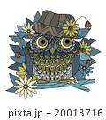 鳥 細密 詳しいのイラスト 20013716
