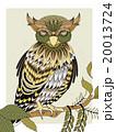 梟 ベクター 鳥のイラスト 20013724