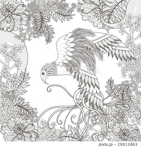 アート 鳥 ぬりえのイラスト素材 20013863 Pixta