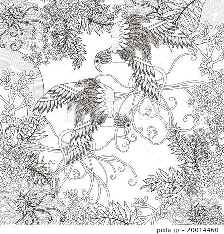 鳥 花 ぬりえのイラスト素材 20014460 Pixta