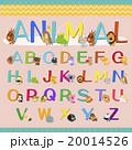 アルファベット 動物 愛らしい 20014526