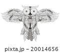 梟 鳥 アートのイラスト 20014656