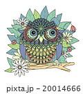 アート 鳥 華のイラスト 20014666