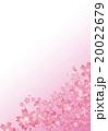桜 20022679