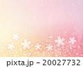 桜の背景【背景・シリーズ】 20027732