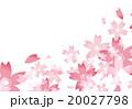 さくら【背景・【背景素材・シリーズ】 20027798