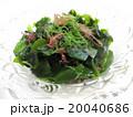 海藻サラダ 20040686