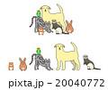 ペットのセット、一列とグループ 20040772