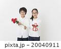 母の日イメージ 20040911