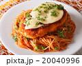 Italian food 20040996