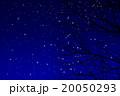 冬の夜空のイラスト 20050293