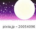 20054096