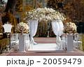 ウェディング ウエディング 結婚の写真 20059479