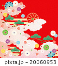 和柄 菊 松のイラスト 20060953