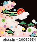 和柄 菊 松のイラスト 20060954