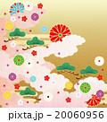 和柄 菊 松のイラスト 20060956