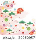 和柄 菊 松のイラスト 20060957