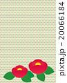 椿 20066184
