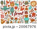 森林 林 森のイラスト 20067976