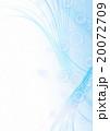 泡 20072709