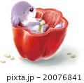 犬と赤いパプリカ A 20076841