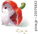 犬と赤いパプリカ B 20076842