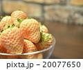 白いイチゴ 20077650