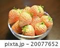 白いイチゴ 20077652