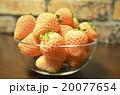 白いイチゴ 20077654