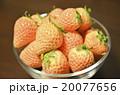 白いイチゴ 20077656
