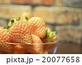 白いイチゴ 20077658